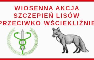 Miniaturka artykułu Akcja szczepienia lisów